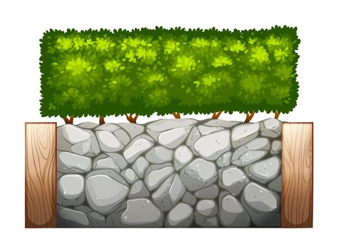 A stonewall with plants