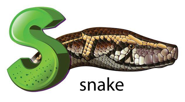 A letter S for snake