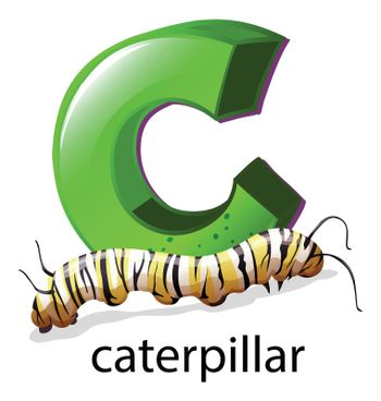 A letter C for caterpillar