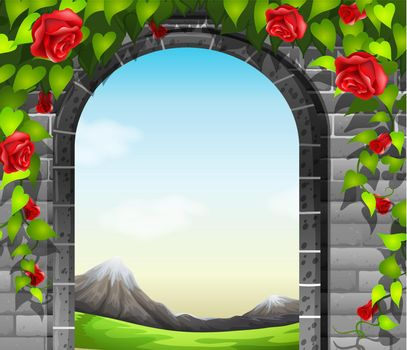 A stonewall with roses