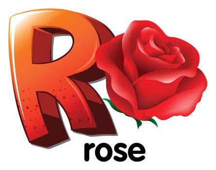 A letter R for rose