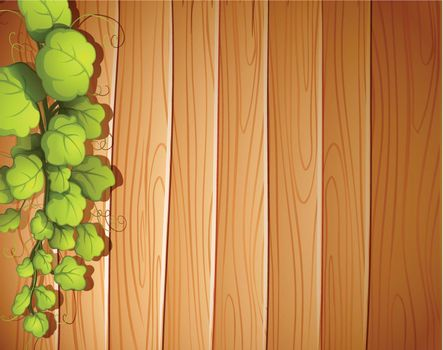 A wooden wall with a vineplant