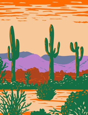 Saguaro Cactus in Sonoran Desert National Monument Located South of Buckeye and East of Gila Bend Arizona WPA Poster Art