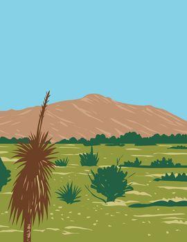 Rincon Peak in Rincon Mountain Within Saguaro National Park Rincon Mountain Wilderness of the Coronado National Forest in Arizona WPA Poster Art