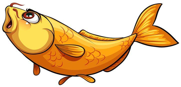 Yellow big fish