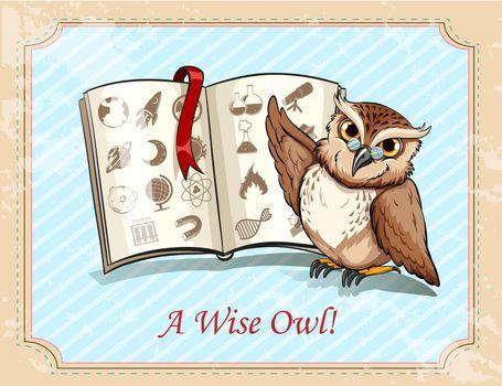 Idiom a wise owl