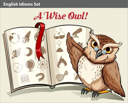 English idiom with a wise owl