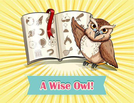 English saying a wise owl