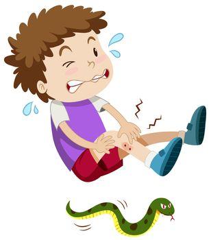 Boy was bitten by snake