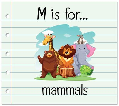 Flashcard letter M is for mammals