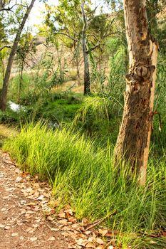 Beautiful green landscape in Chelva, Valencia, Spain