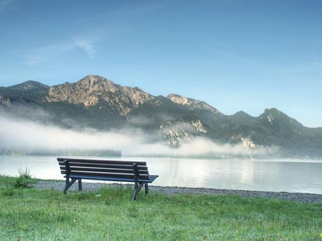 Bench under a tree on a lake shore. Mountains at background.