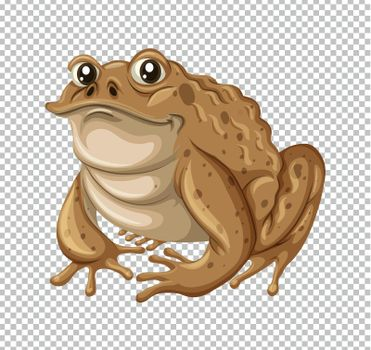 Toad with brown skin
