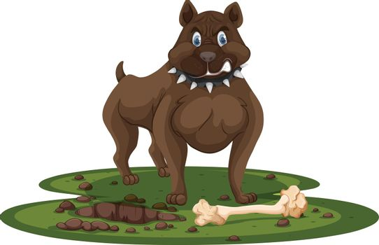 A pitbull and bone
