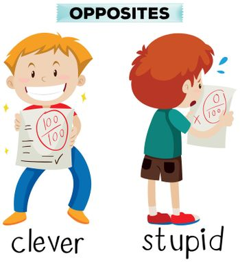 Opposite words for clever and stupid