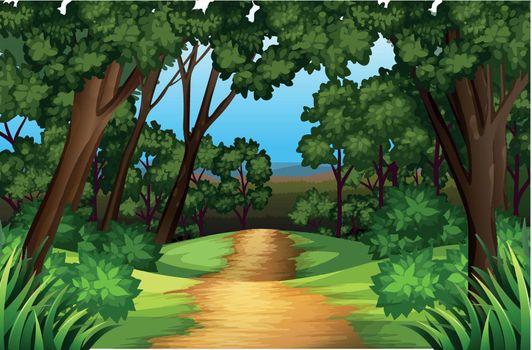 A nature road landscape illustration
