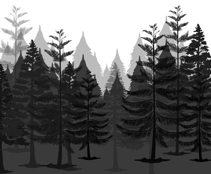 A Dark Mystery Forest