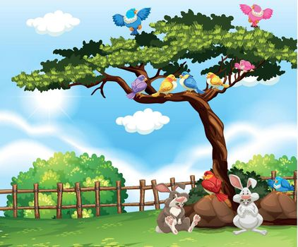 Background scene with birds on the tree and bunnies on the grass illustration