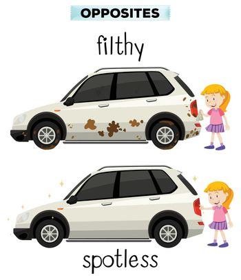 English opposite word filthy and spotless