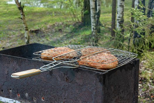 Pieces of meat in the grill are fried on the fire, the background is blurred. Stock photo.