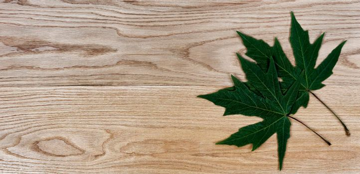 Green oak leaves on solid American red oak wood planks for industrial concept