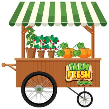 Food vendor with fresh vegetables on white background