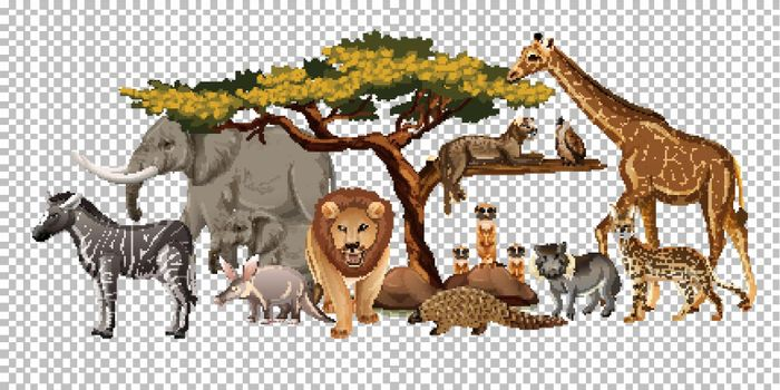 Group of wild african animal on transparent background illustration