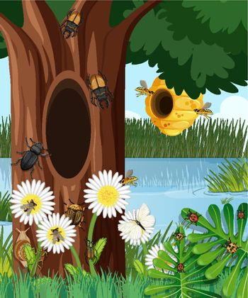 Forest scene with bee hive and other insects