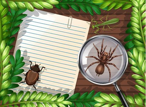 Top view of blank paper on table with leaves and insects elements