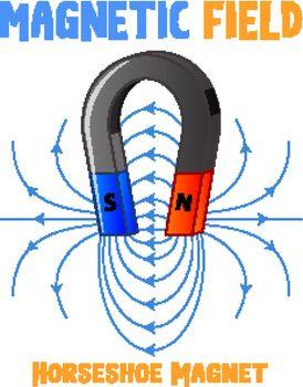 Magnetic field of horseshoe magnet