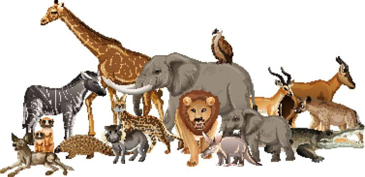 Group of wild african animal on white background illustration