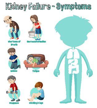 Kidney Failure Symptoms Information Infographic illustration