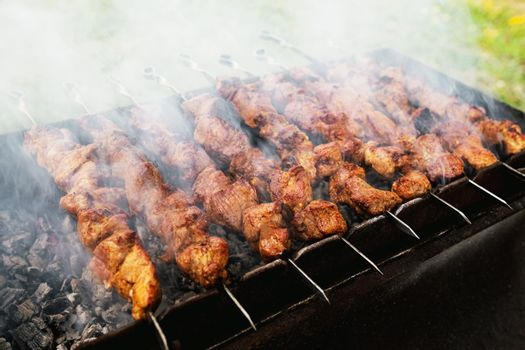 Tasty barbecue skewer with pork meat on brazier with smoke
