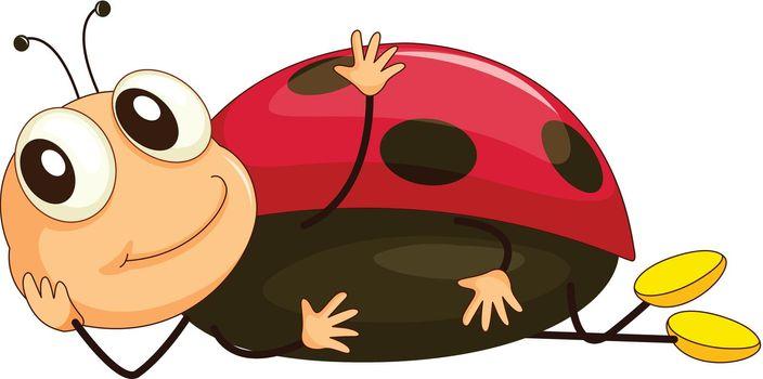 Illustration of a comical ladybug