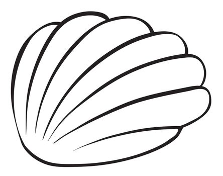 illustration of a cockleshell sketch on a white background