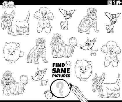 find two same purebred dogs game coloring book page
