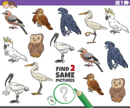 find two same cartoon birds educational game