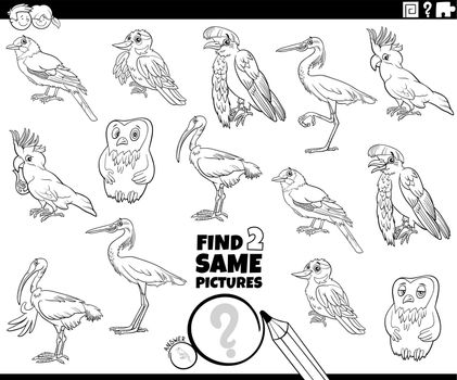find two same birds game coloring book page