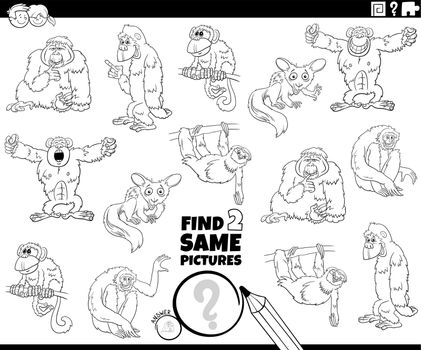 find two same cartoon animals game coloring book page