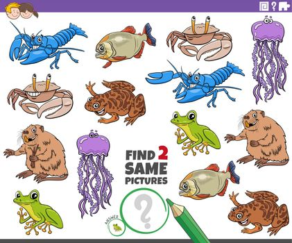 find two same cartoon animals educational task