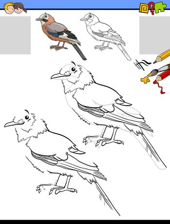 drawing and coloring task with jay bird animal character