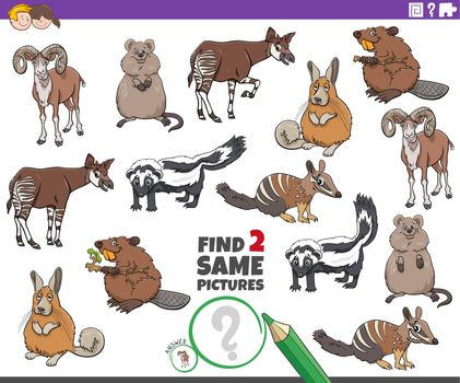 find two same cartoon wild animals educational task