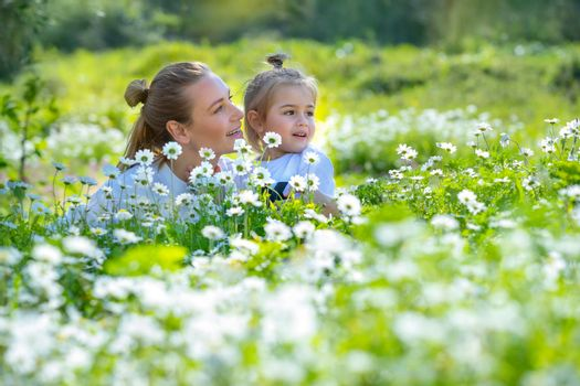 Adorable Little Boy with his Beautiful Mom Enjoying Fresh Daisy Field. Leisure Time in Countryside. Spending Summer Holidays Together outdoors.