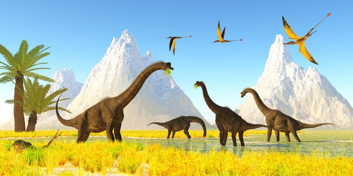 A flock of Rhamphorhynchus reptiles fly over a herd of Brachiosaurus dinosaurs eating water plants.