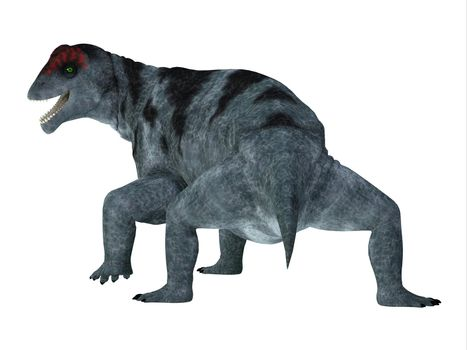 Moschops was a therapsid herbivorous dinosaur that lived during the Permian Period of South Africa.