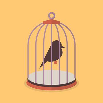Bird in bird cage