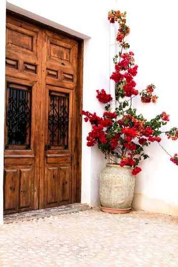 Beautiful whitewashed facade with old wooden door and colorful bougainvillea plant in Altea village, Alicante, Spain