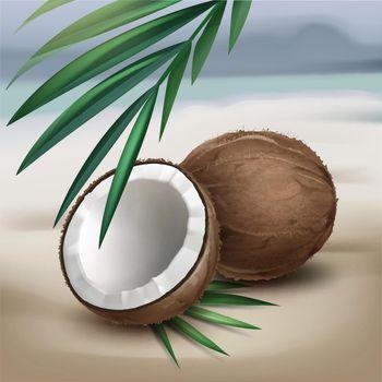 Coconuts on seaside
