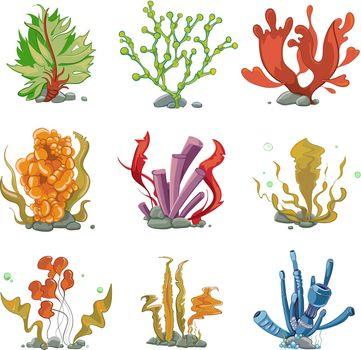 Underwater plants in cartoon vector style