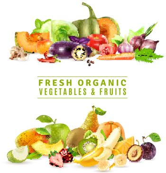 Fresh Vegetables And Fruits Design Concept